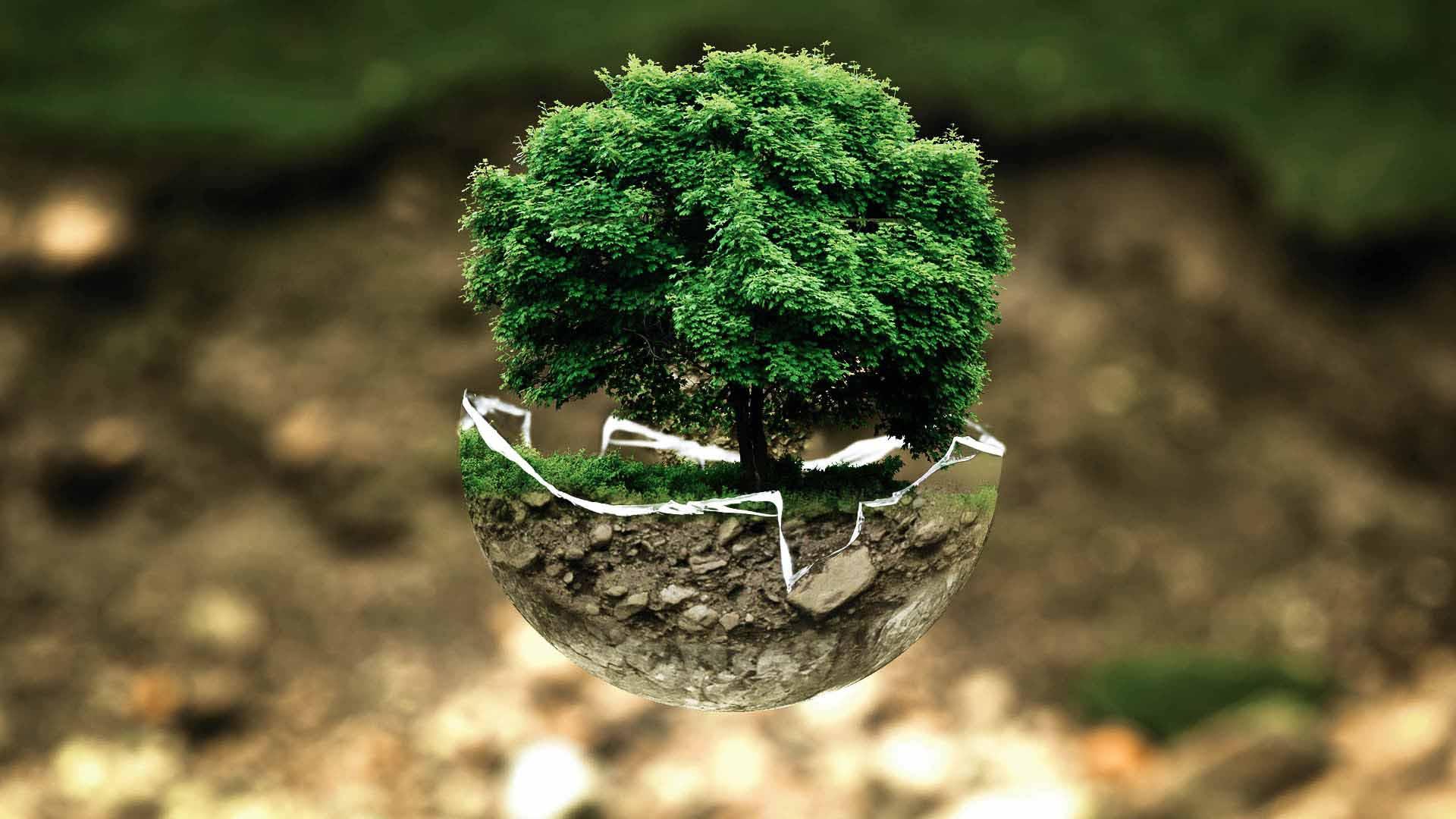 Tutela dell'ambiente, le imprese investono di più