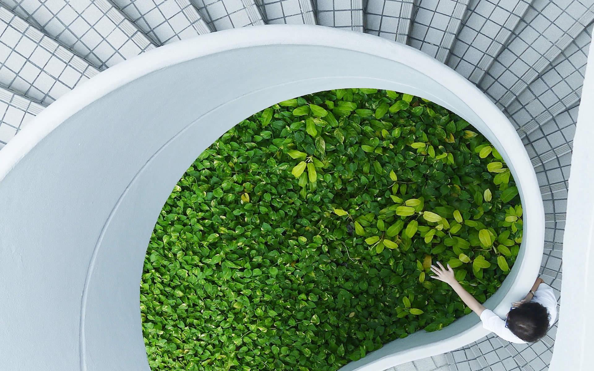 Innovazione, sviluppo e lavoro: la Green Economy traina le imprese