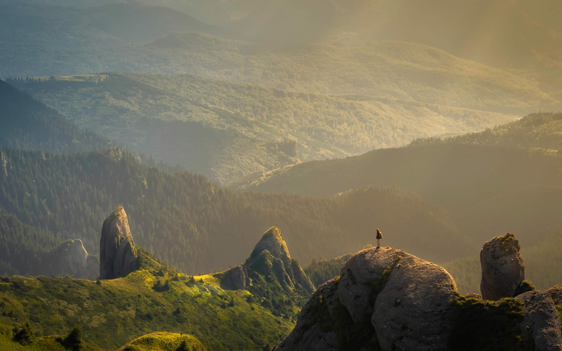 """Giornata mondiale dell'Ambiente: il 5 giugno """"è il momento della natura"""""""