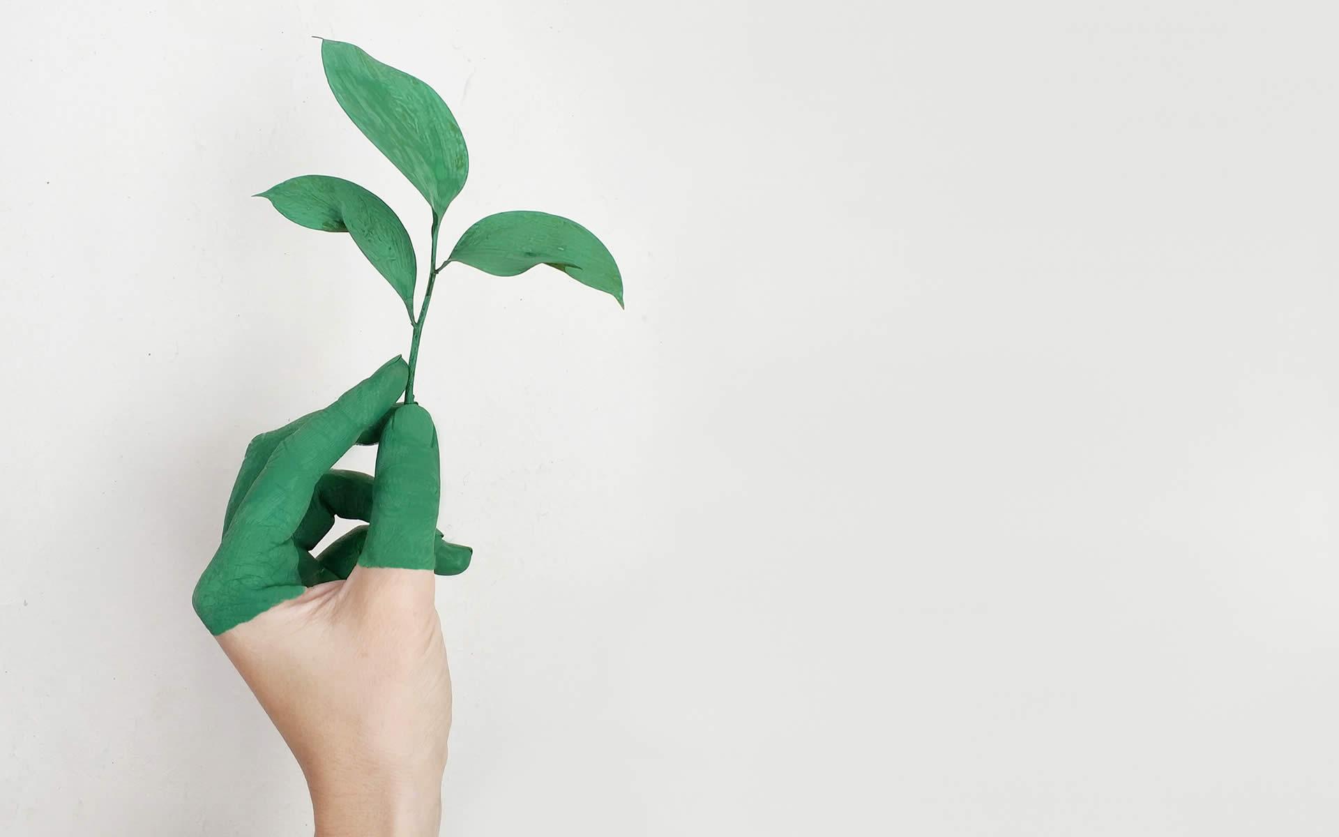 Tempo di MUD. Entro il 30 giugno la presentazione del Modello di dichiarazione ambientale